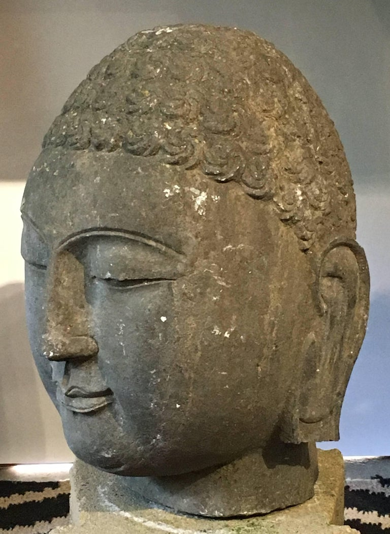 Chinese Carved Limestone Head of the Buddha, Mid-20th Century For Sale 1