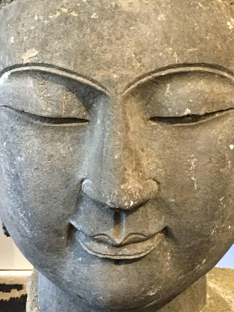 Chinese Carved Limestone Head of the Buddha, Mid-20th Century For Sale 2