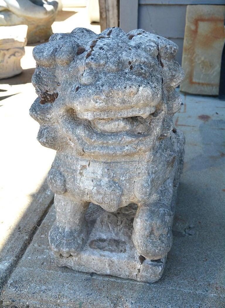 Hand-Carved Chinese Carved Stone Garden Guardian Lion For Sale