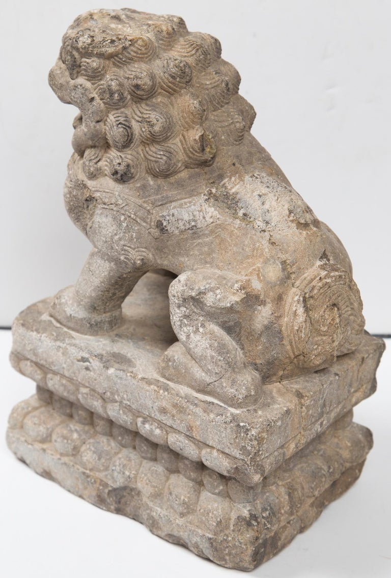 Hand-Carved Chinese Carved Stone Temple Lion For Sale