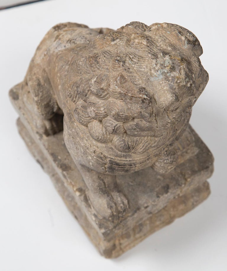 Chinese Carved Stone Temple Lion For Sale 1