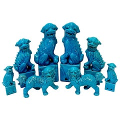 Chinese Export Turquoise Foo Dogs, A Collection