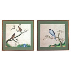 Chinese Export Watercolor Exotic Bird Paintings on Paper