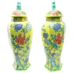 Chinese Hand Painted Ceramic Urns, Pair