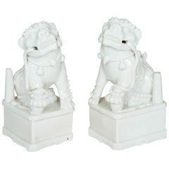 Chinese Kangxi Pair of Blanc de Chine Buddisth Lions or Foo Dogs, 17th Century