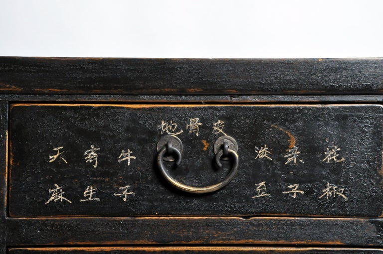 Chinese Medicine Chest with Drawers For Sale 7