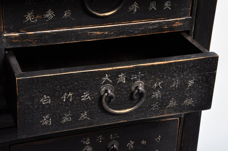 Chinese Medicine Chest with Drawers For Sale 11