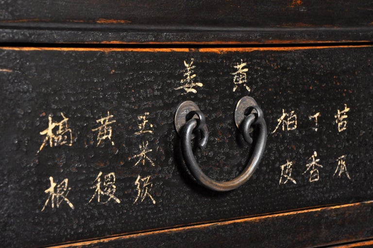 Chinese Medicine Chest with Drawers For Sale 15
