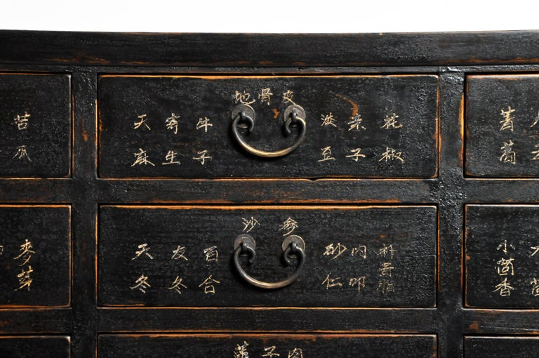 Chinese Medicine Chest with Drawers For Sale 4
