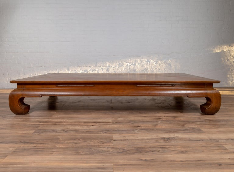 Chinese Ming Dynasty Style Kang Waisted Daybed with Natural Patina and Chow Legs For Sale 5