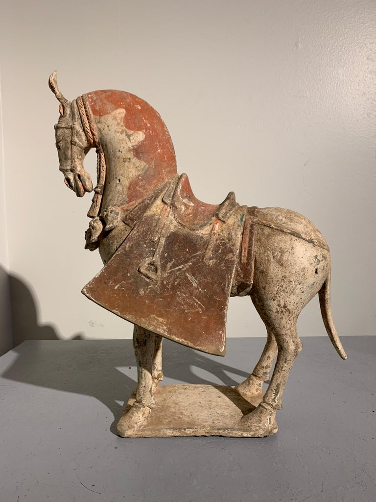 A magnificent and rare painted pottery model of a caparisoned horse, Northern Wei Dynasty (386 to 534), 5th-6th century, China.   The noble beast is portrayed standing foursquare upon a rectangular plinth, looking downwards, its long, thick neck