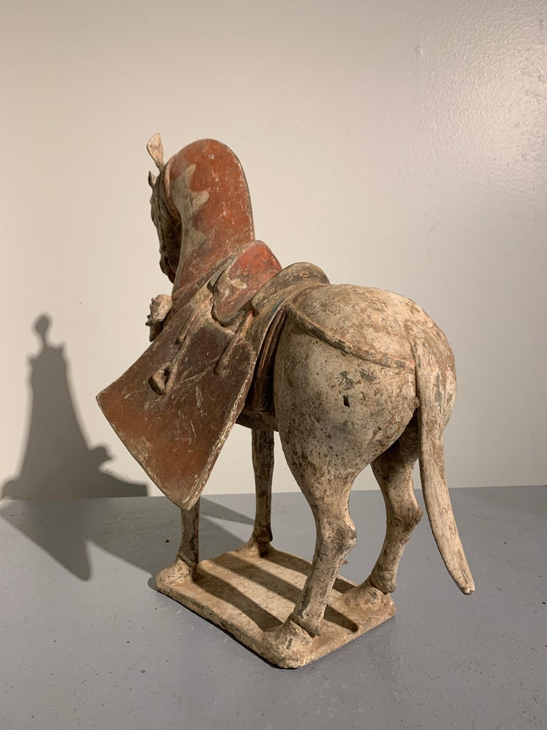 Tang Chinese Painted Pottery Caparisoned Horse, Northern Wei Dynasty '386-534' For Sale