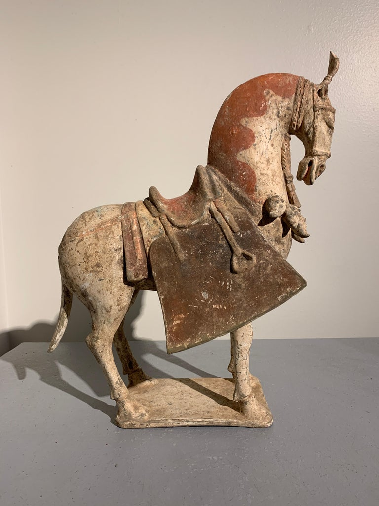 Fired Chinese Painted Pottery Caparisoned Horse, Northern Wei Dynasty '386-534' For Sale