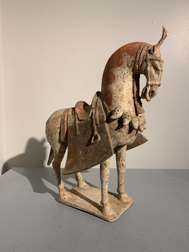 Chinese Painted Pottery Caparisoned Horse, Northern Wei Dynasty '386-534' In Good Condition For Sale In Austin, TX