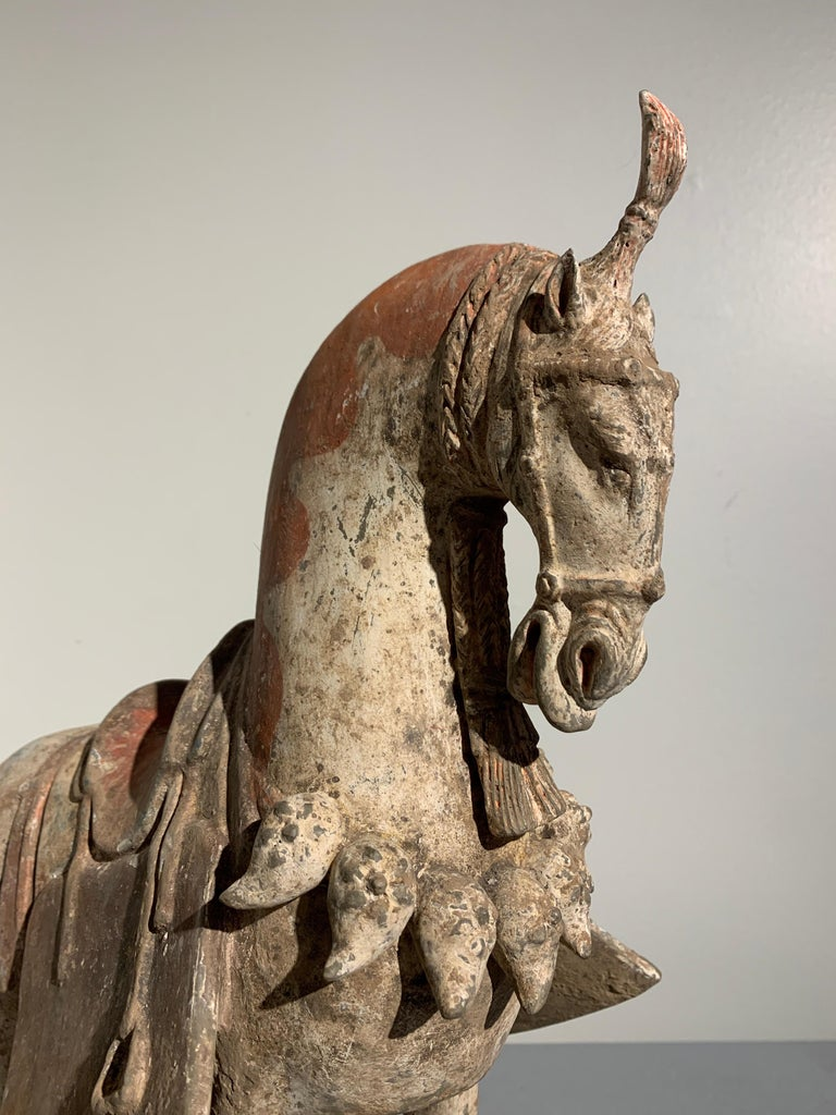 Terracotta Chinese Painted Pottery Caparisoned Horse, Northern Wei Dynasty '386-534' For Sale