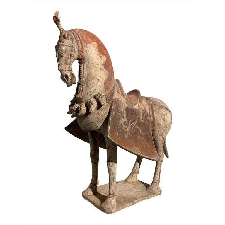 Chinese Painted Pottery Caparisoned Horse, Northern Wei Dynasty '386-534' For Sale