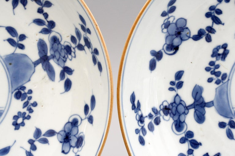 Chinese Pair of Kangxi Blue and White Painted Floral Porcelain Plates For Sale 12