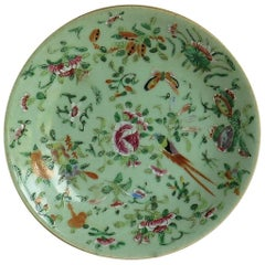 Chinese Porcelain Plate or Dish Celadon Glaze Hand Painted, Qing, circa 1820