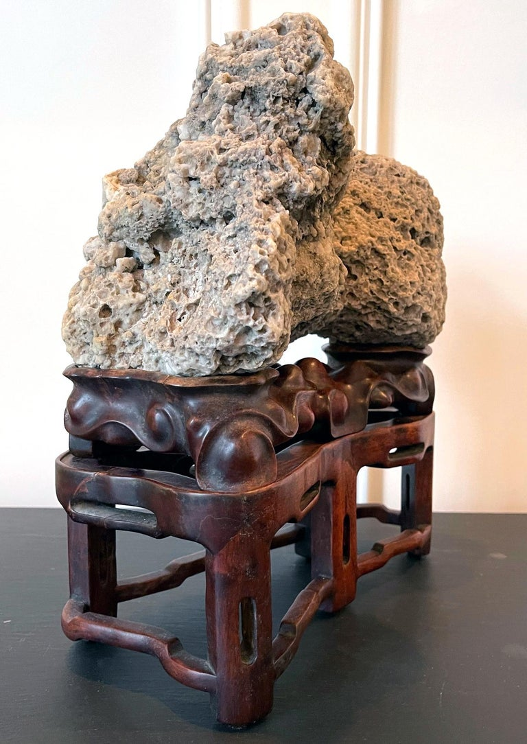Chinese Export Chinese Scholar Rock Kun Stone on Display Stand For Sale