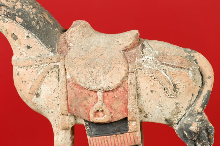 Chinese Tang Dynasty Horse Model circa 618-907 AD with Original Pigmentation In Good Condition For Sale In Yonkers, NY