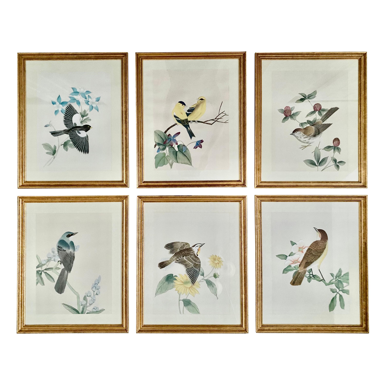 Chinoiserie Botanical Bird Wall Art Silk Paintings, Set of 6