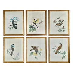 Chinoiserie Botanical Bird Wall Art Silk Paintings, Set of 6