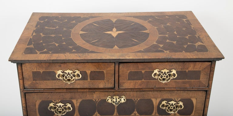 19th Century Chippendale Style Oyster Veneered Small Chest of Drawers For Sale