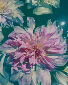 DAHLIA IN A RAVELLO FOUNTAIN (floral aqua painting realist flower oil painting)