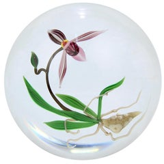 Chris Buzzini Artist-Proof Orchid Flower and Roots Art Glass Paperweight