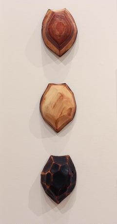 """3 Terrapin Shells"" - Turtle Shells - Wildlife Sculpture - Wooden Sculpture"