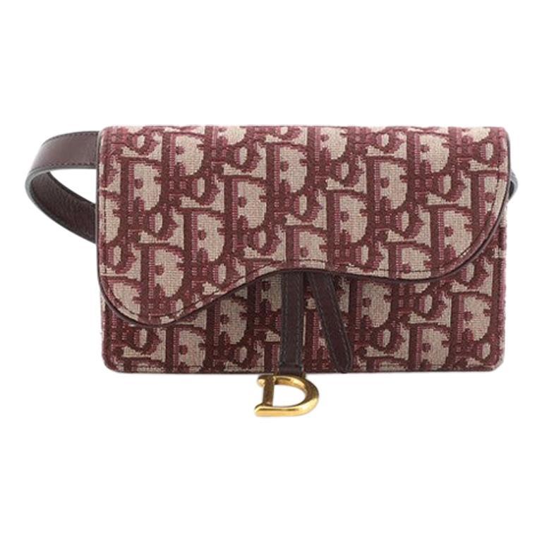 Christian Dior Saddle Rectangular Belt Bag Oblique Canvas For Sale