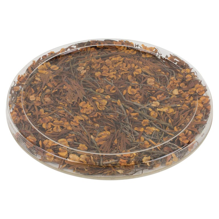 Christian Dior Tray Board Platter Lucite and Dried Flowers For Sale