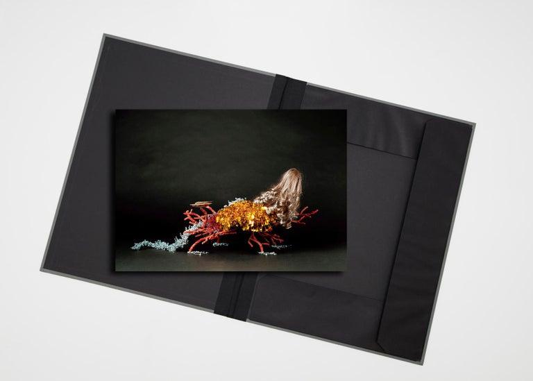 Creature I  ( photograph in archival artwork portfolio binder ) For Sale 1
