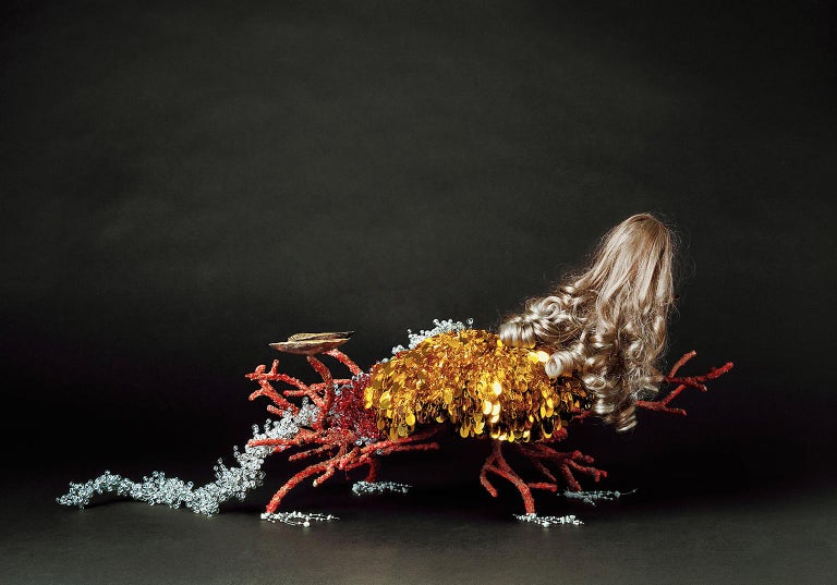 Christian Stoll Color Photograph - Creature I - fantastical creatures made of found objects and organic materials
