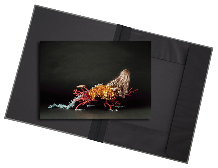 Christian Stoll Color Photograph - Creature I - photograph in classic archival artwork portfolio gift binder