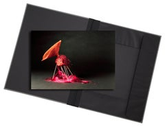 Creature II - photograph in classic archival artwork portfolio gift binder