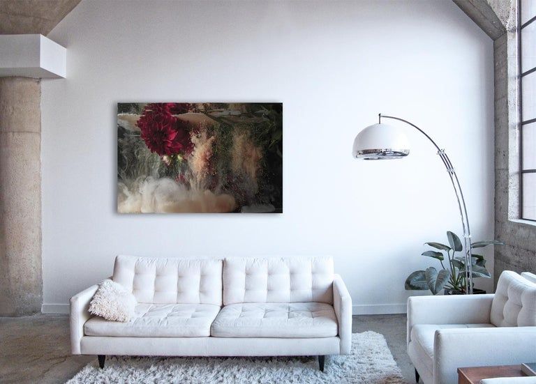 Flora ll - large format photograph of abstract floral and liquid cloud explosion - Print by Christian Stoll