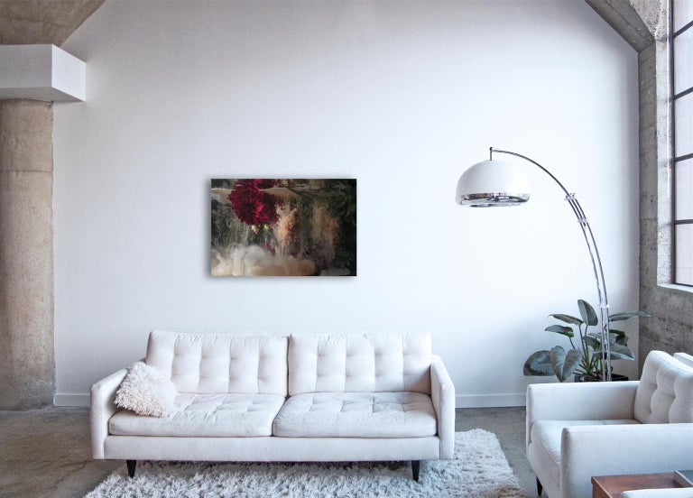 Flora ll - large format photograph of abstract floral and liquid cloud explosion - Contemporary Print by Christian Stoll
