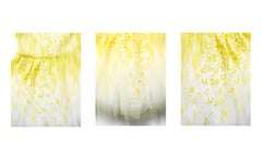 "TULLE Tripthych - abstact photographs of  mesmerizing texture details 50"" x 38"""