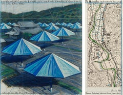 The Umbrellas, Joint Project for Japan & USA by CHRISTO - Contemporary art, 1989