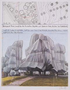 Wrapped Trees - original Christo modern art lithograph landscape Switzerland
