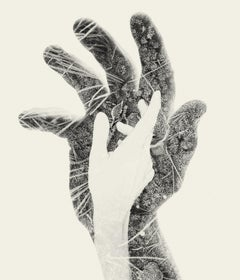 First Frost - black and white hands and nature multi exposure photograph
