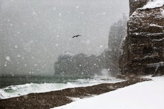 La Mouette - Christophe Jacrot, Seaside, Travel photography, Stormy weather