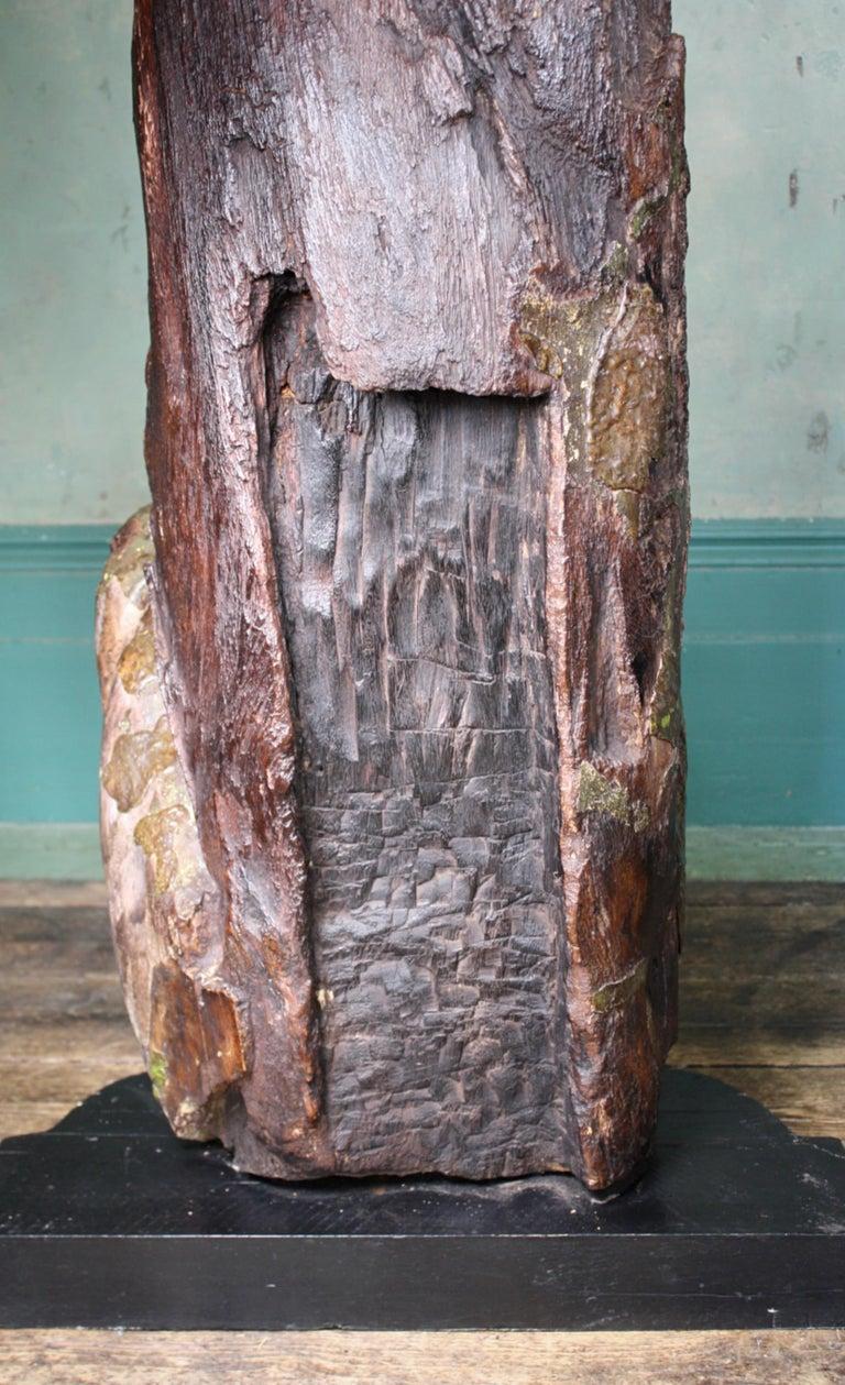 Circa 1880 Large Carved Oak Dragon Figurehead Gentleman's Yacht Maritime  For Sale 11