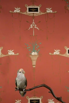 Rosy-Faced Lovebird No. 7548 - Red wallpaper w/ small feather bird on branch