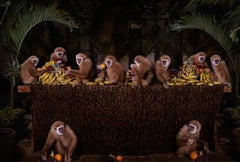 The Lar Gibbon Feast - Anthropomorphic primate banana fruit meal in Thailand
