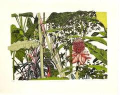 Clare Halifax, Big Red (Waratah), Limited Edition Print, Floral Art