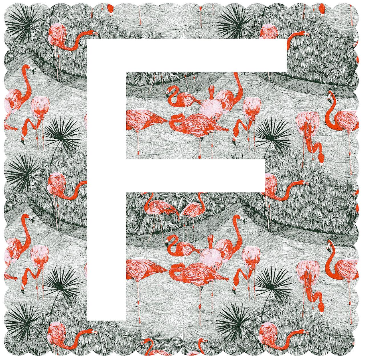 Clare Halifax, F is for Flamingo, Limited Edition Alphabet Print, Bright Art