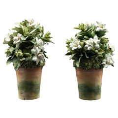 Clare Potter Pair of Porcelain White Gardenias in Pots