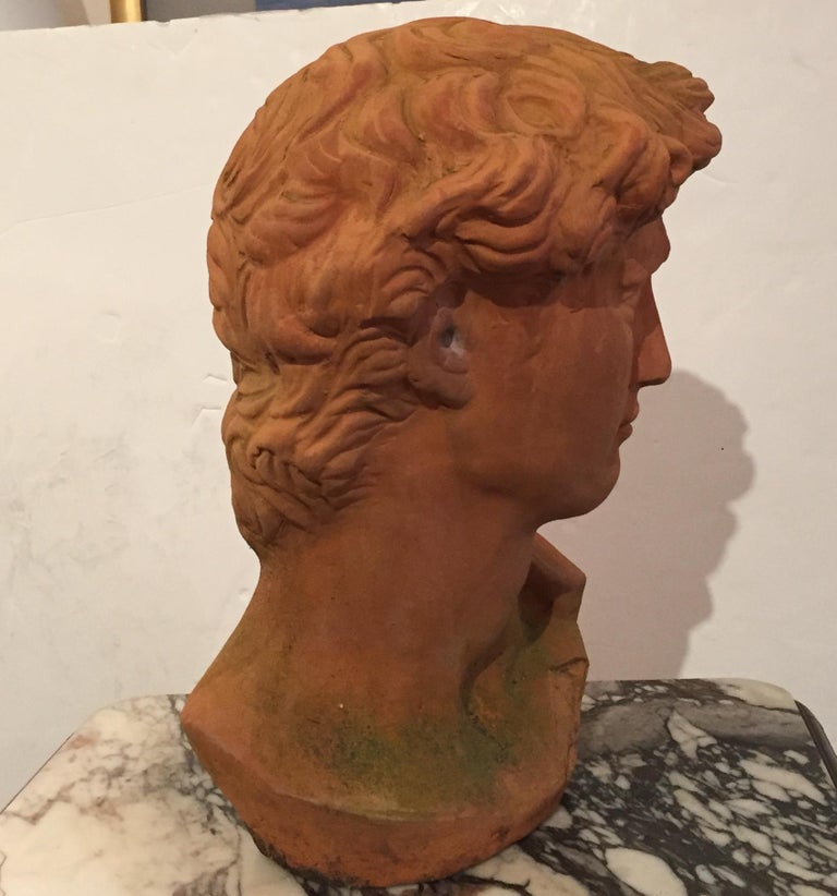 Romantic sculptural bust in earthy terracotta of the classically handsome David.
